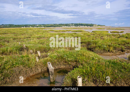 Coastal wetland saltmarsh bog at low tide in Red Wharf Bay (Traeth Coch) AONB from Pentraeth, Isle of Anglesey (Ynys Mon), Wales, UK, Britain - Stock Image
