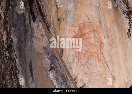 Bushman rock paintings of animals, Botswana - Stock Image