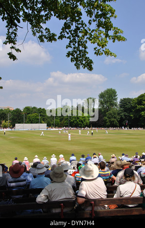 spectators watching county cricket, Derbyshire v Yorkshire, Queens Park, Chesterfield, Derbyshire, England on 18th July 2013 - Stock Image