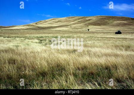 Landscape near David Gareja monastery, Kakheti, Georgia - Stock Image