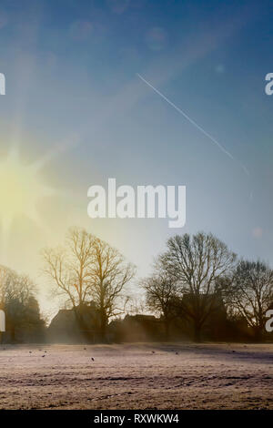 Shooting into the sun in Abington Park on a cold, frosty and misty morning. Northampton, uk. - Stock Image