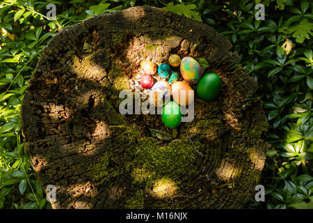 Easter background on the grass - Stock Image