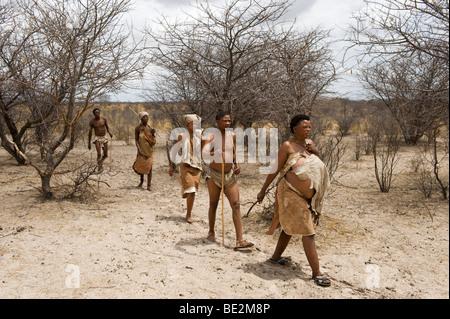 Naro bushman (San) walking, Central Kalahari, Botswana - Stock Image
