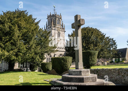 The church of St Andrew, Colyton, Devon. with memorial cross and clipped yew tress in the garden. - Stock Image