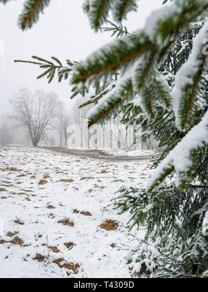 Dirty off-road country-road in early late Winter during first snow - Stock Image
