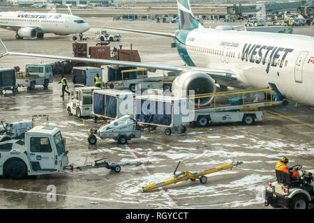 Baggage being unloaded off a Westjet Boeing 737 on tarmac at Pearson Airport in Toronto, Ontario. - Stock Image