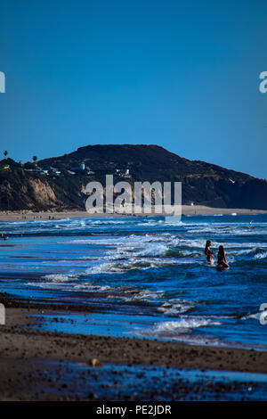 Brown pelicans in flight and perched on the Pacific Ocean on the beach in Malibu, California - Stock Image