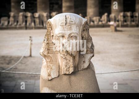 King Ramses II head, Karnak Temple, Karnak, Luxor, Egypt - Stock Image