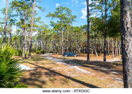 Picnic area at Faver-Dykes State Park near St Augustine, Florida USA - Stock Image