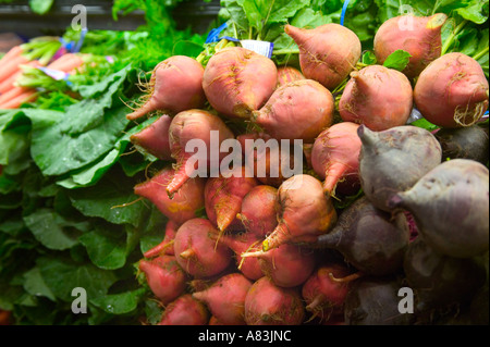 Golden Beets - Stock Image