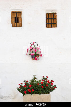 Andalusian whitewashed house with flowerpots and jardiniere face shaped. Alfarnatejo, Malaga mountains, Andalusia, Spain. - Stock Image