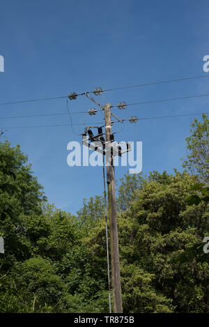 Electricity power lines running through the woodlands near Combe Martin, Devon. - Stock Image