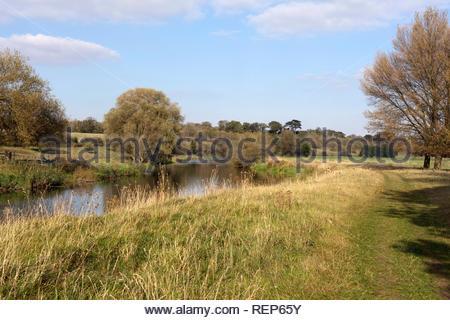 River Nene running through Nene Park in Peterborough, Cambridgeshire, England, UK - Stock Image