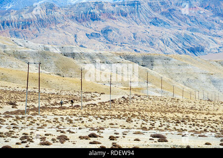 Two trekkers walking towards Tsarang on a track bordered by utility poles, Upper Mustang region, Nepal. - Stock Image
