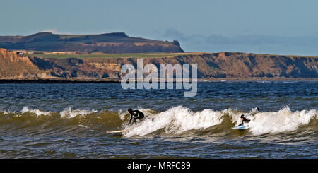 Catching the wave, a pair of surfers ride an incoming wave into Scarborough's North Bay - Stock Image