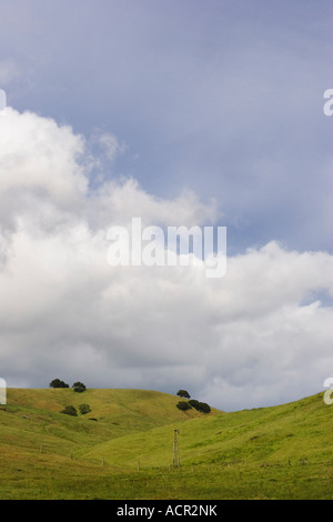 A windmill among rolling hills in Sonoma County, California, USA - Stock Image