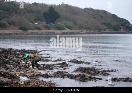 A father and son looking into a rockpool in Cornwall during the winter. - Stock Image