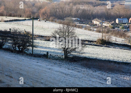 Early morning frosty scene in winter with white fields on a rural farm in Kirkheaton, West Yorkshire, U.K. - Stock Image
