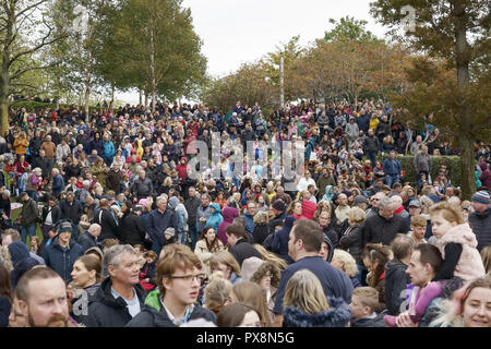 Crowds gather on Chavasse Park waiting for the Giants Spectacular parade through Liverpool city centre UK - Stock Image