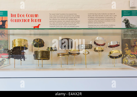 Dog Collar Museum Leeds Castle - Stock Image