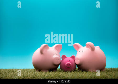Group of piggy banks on green grass and blue sky - Stock Image