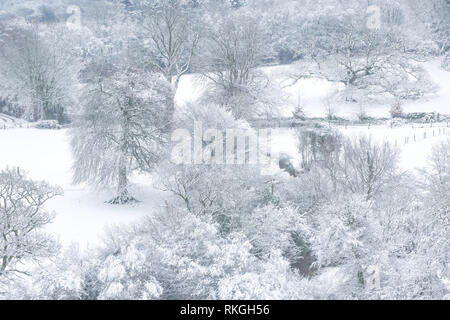 View over a snowy landscape of fields and tree's. Devon Uk - Stock Image