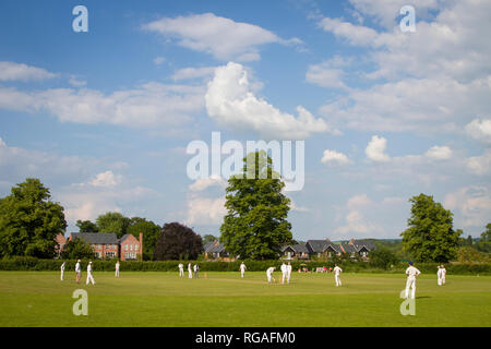 A cricket match underway on the Cholsey Meadows Developmment near Cholsey, Oxfordshire, formerly the Fair Mile hospital. - Stock Image