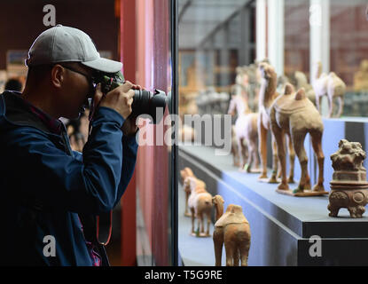 Beijing, China. 24th Apr, 2019. A visitor takes photos of exhibits at the National Museum of China in Beijing, capital of China, April 24, 2019. Chinese cultural relics returned from Italy are on display at the National Museum of China in Beijing from April 24 to June 30. The exhibition, titled 'The Journey Back Home' showcases more than 700 pieces of returned Chinese artifacts. Credit: Li He/Xinhua/Alamy Live News - Stock Image