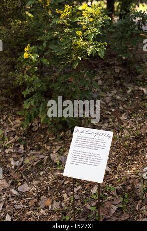 A descriptive sign at one of the points of interest in the Lewis and Clark Botanical Legacy garden at the Oregon Garden in Silverton, Oregon, USA. - Stock Image