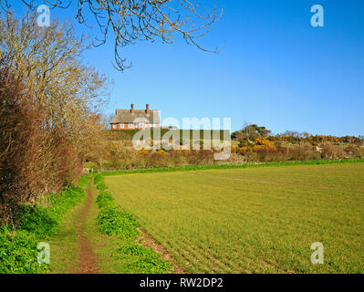 A view of a public footpath and circular walk through farmland in North Norfolk at Blakeney, Norfolk, England, United Kingdom, Europe. - Stock Image