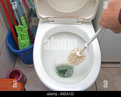 Hand holding round brush cleaning water closet - Stock Image
