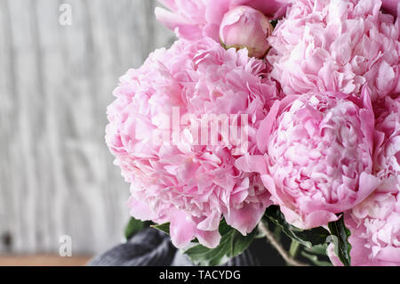 Bouquet of pink Peony flowers against a white rustic wood background  with copy space for your text. - Stock Image