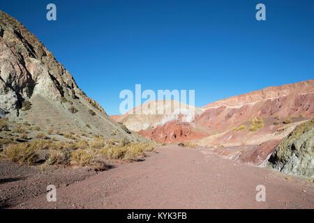 Rainbow valley Chili - Stock Image