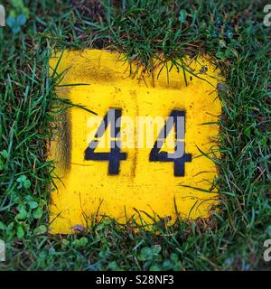 44 number on grass - Stock Image