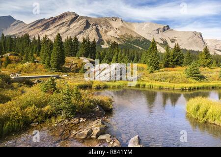 Scenic Landscape View of Pipestone Mountain Hiking Meadows Red Deer Lakes remote Wilderness Area of Banff National Park, Canadian Rocky Mountains - Stock Image