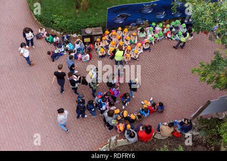 Schoolchildren at Lisbon Zoo, Portugal - Stock Image