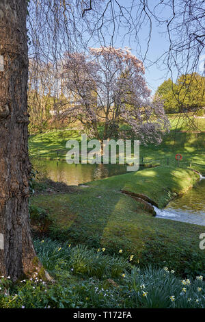 The gardens of St Fagans Catle, St Fagans National Museum of History, Cardiff, South Wales - Stock Image