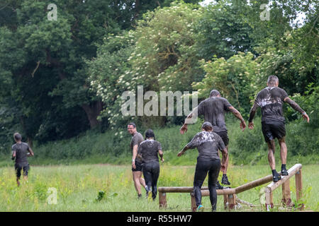 Very muddy obstacle course runners in a field of long grass - Stock Image