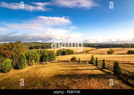 Beautiful view of a landscape with dry plains and green forest in the summer - Stock Image