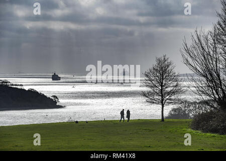 Trelissick, near Truro, Cornwall, UK. 13th Feb 2019 UK Weather. It was 13 degrees C in the sunshine this lunchtime on the outstkirts of Truro in Cornwall, looking towards the river Fal. Credit: Simon Maycock/Alamy Live News - Stock Image