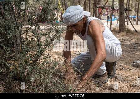 Karmei Yosef, Israel. 15th July, 2019. Israeli snake handler, breeder and catcher RAFAEL YIFRACH, 52, is summoned for an emergency snake catch following a bite delivered to a child at a scouts summer camp. Yifrach has been intrigued by snakes since he was seven years old, he's been bitten by venomous snakes 18 times and currently grows and breeds some 300 non venomous snakes. World Snake Day is celebrated 16th July contributing to the cause of conservation of a sometimes dangerous but mostly misrepresented reptile. Credit: Nir Alon/Alamy Live News. - Stock Image