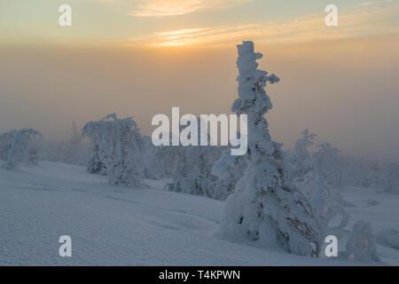 Landscape in winter season, sun behind clouds making the sky orange, nice colorful sky, Gällivare county, Swedish Lapland, Sweden - Stock Image