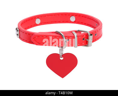 Heart Dog Tag with Leather Collar Isolated on White Background. - Stock Image