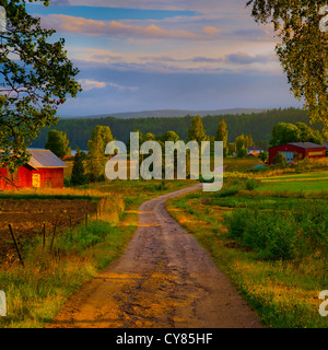 A country lane on a summer's evening in Varmland, Sweden. - Stock Image