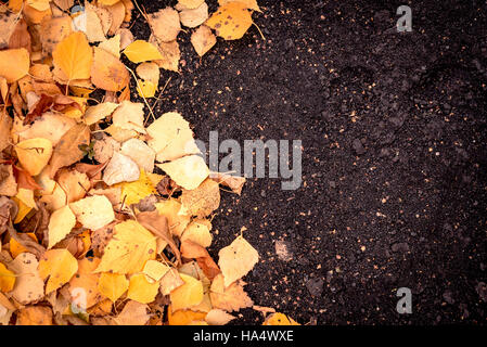 Fallen autumn leaves with a natural dirt earth area for copy space text for autumnal themed designs and concepts. - Stock Image
