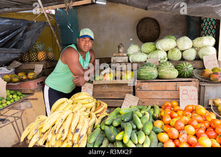 Cuba, Havana. Produce vendor. Credit as: Wendy Kaveney / Jaynes Gallery / DanitaDelimont.com - Stock Image