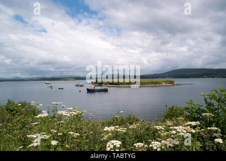Beautiful view of Bantry Bay as seen from Whiddy Island in County Cork,Ireland. - Stock Image
