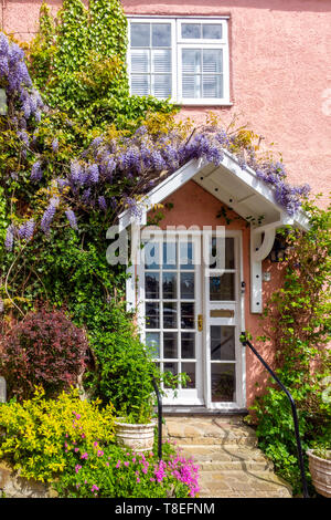 A detail showing the white front door and porch on a cottage in a Georgian Market town in North Yorkshire covered in Wisteria climbing plant - Stock Image