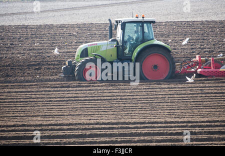 A tractor, near Blakeney, Norfolk, UK, pulling a soil de-stoner in preparation for potato planting. It spring. There's - Stock Image