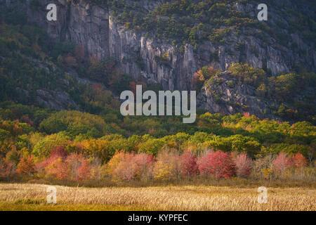 Autumn in Acadia National Park in Maine - Stock Image